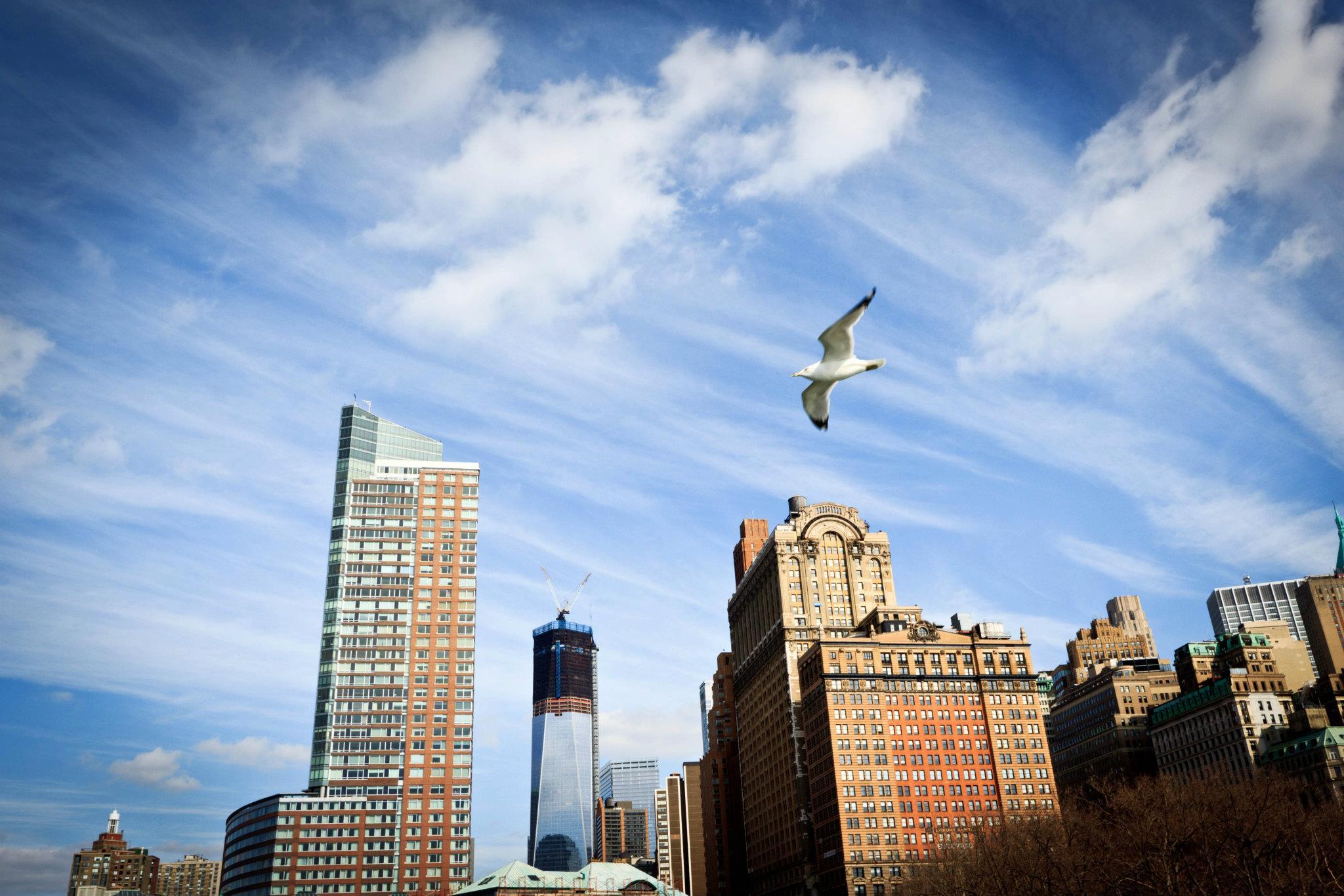 Sehenswürdigkeiten in New York: New York Skyline