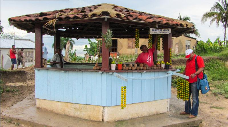 Orangen- und Kokosnuss-Verkauf an der Straße nach Camagüey