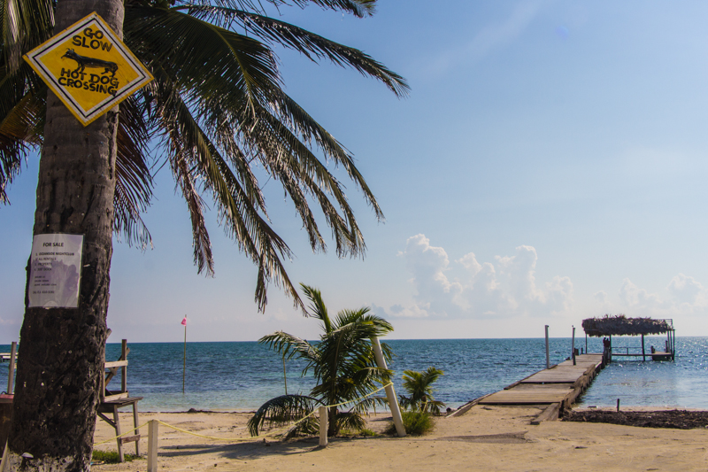Belize Sehenswürdigkeiten: Insel für Backpacker Caye Caulker