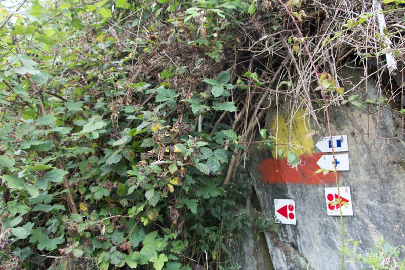 Belgische Ardennen wandern: tal der feen achouffe wandern