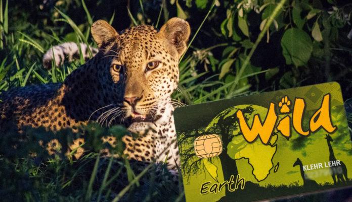 Wildcard Südafrika kaufen?l