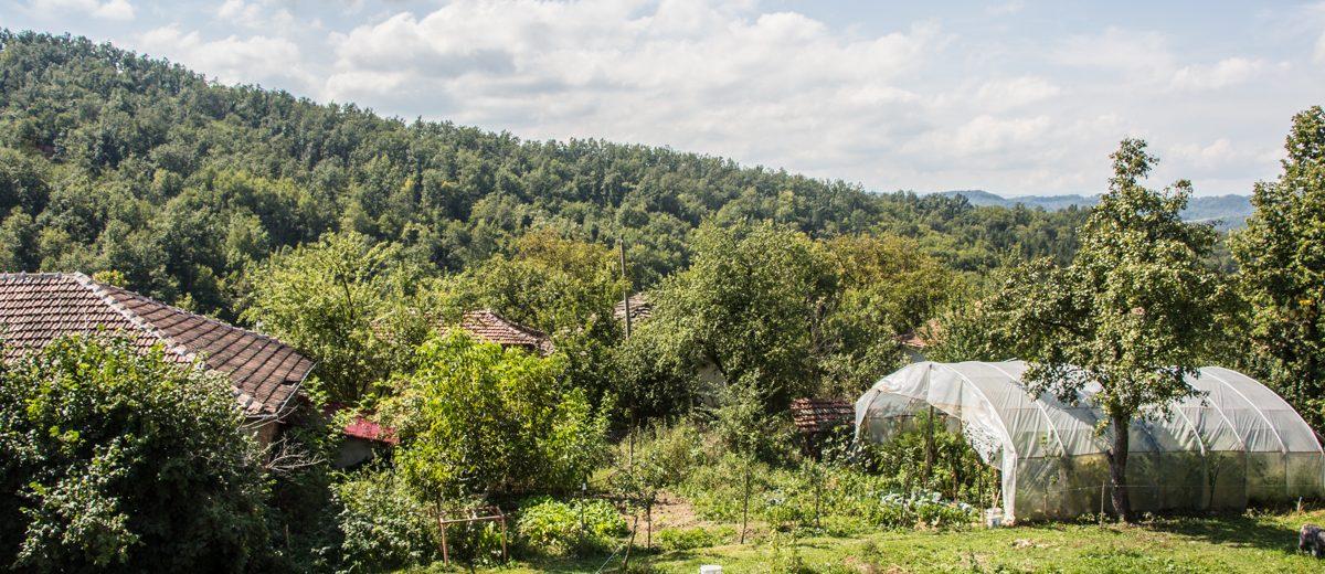 Roadtrip durch Bulgarien Natur