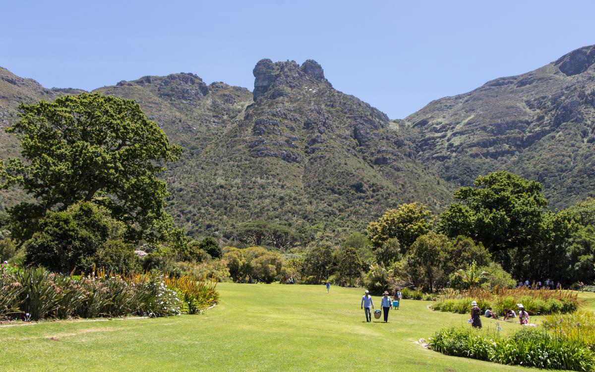 Botanical Gardens in Kirstenbosch bei Kapstadt.