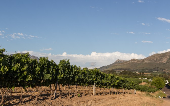 Winelands Weingüter Südafrika Highlights