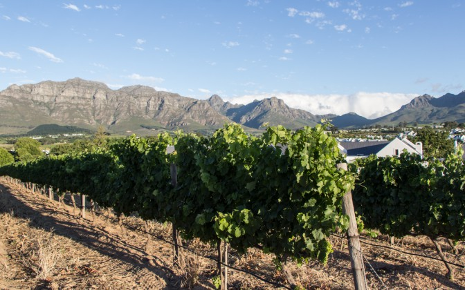 Winelands Südafrika Highlights