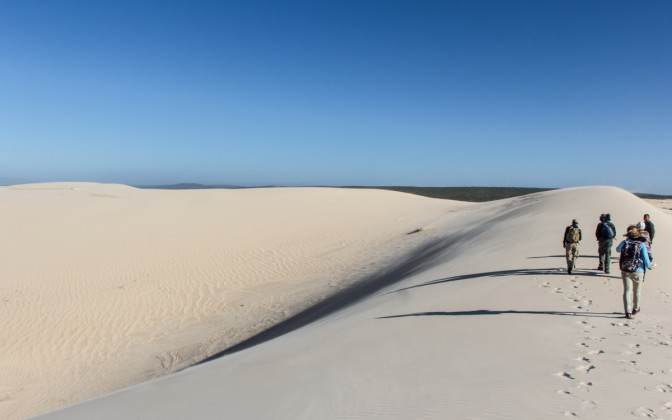 Geheimtipp Sanddünen West Coast Nationalpark in Südafrika