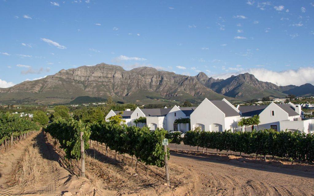 Winelands Kleine Zalze Stellenbosch