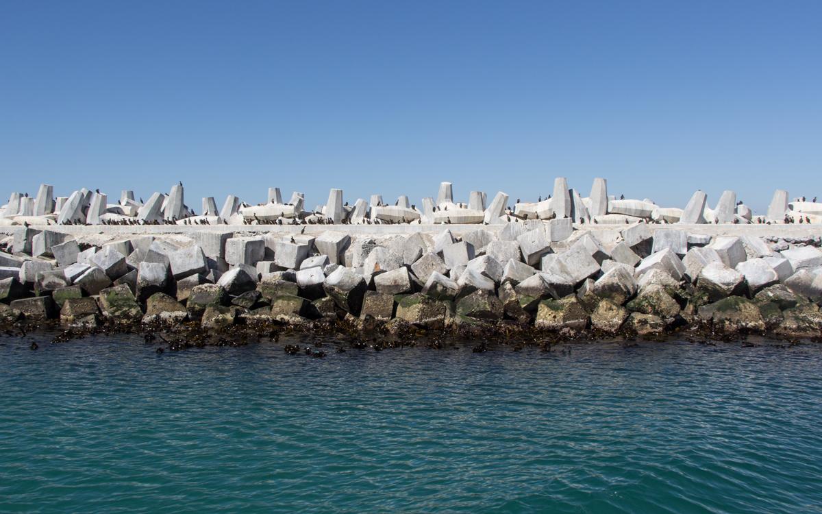 Robben Island Tour: Der Hafen in Robben Island