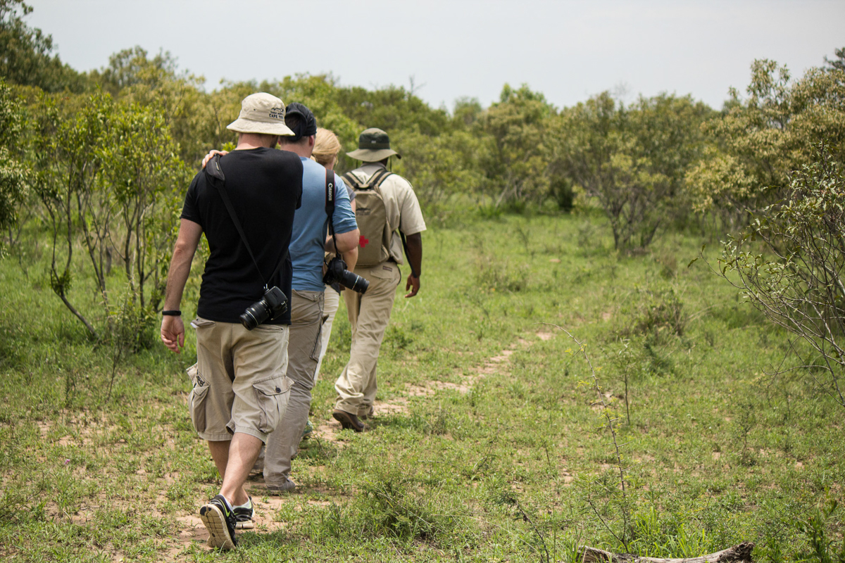 Walking Tour im Mkhaya Game Reserve