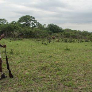 St. Lucia, Hluhluwe Nationalpark und Durban 31