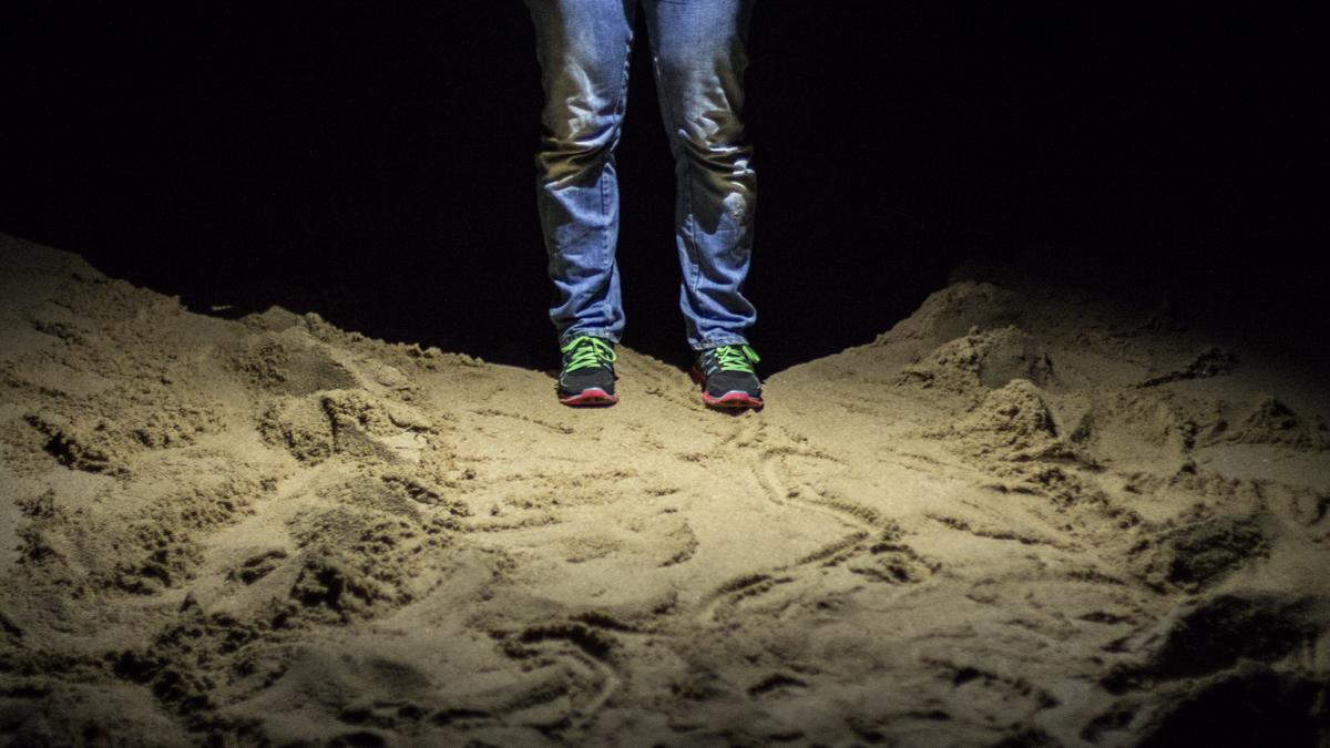 Lederschildkröte Spuren im Sand St Lucia Turtle Tour