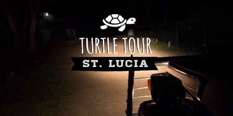 Die Lederschildkröte – eine nächtliche Turtle Tour im iSimangaliso Wetland Park bei St. Lucia