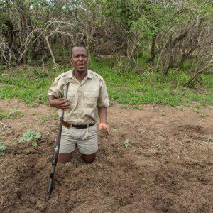 St. Lucia, Hluhluwe Nationalpark und Durban 32