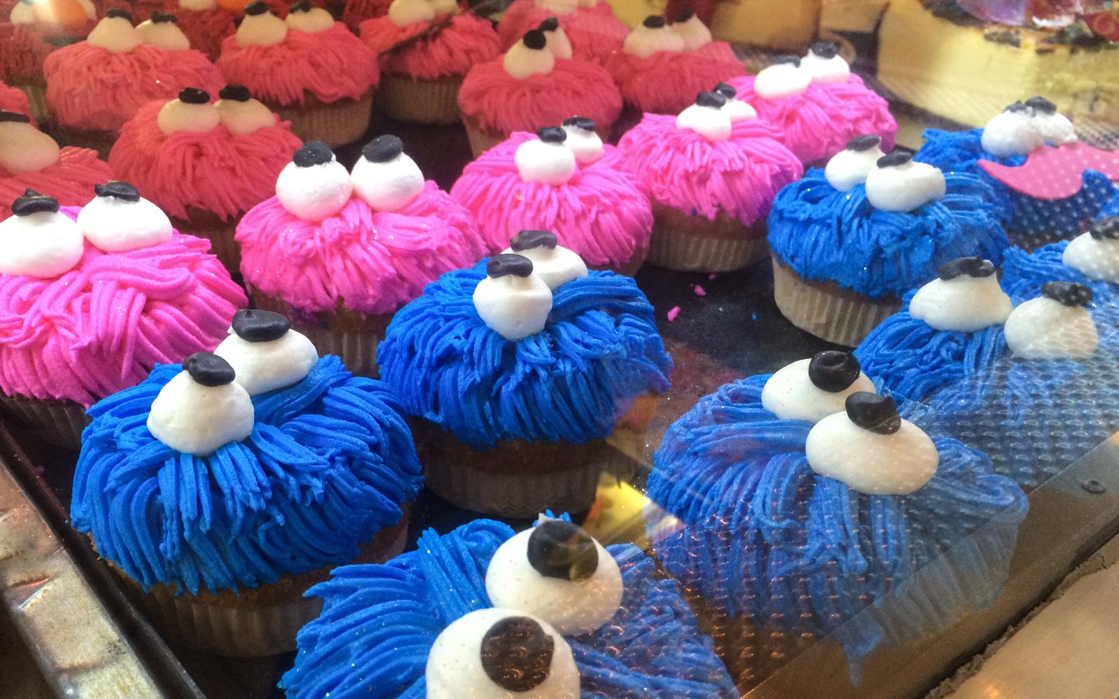 charlys-bakery-cupcake-cookiemonster-1