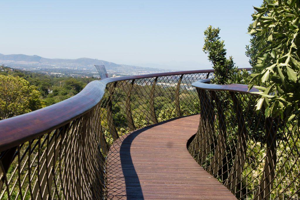 Baumwipfelpfad Kirstenbosch Kapstadt