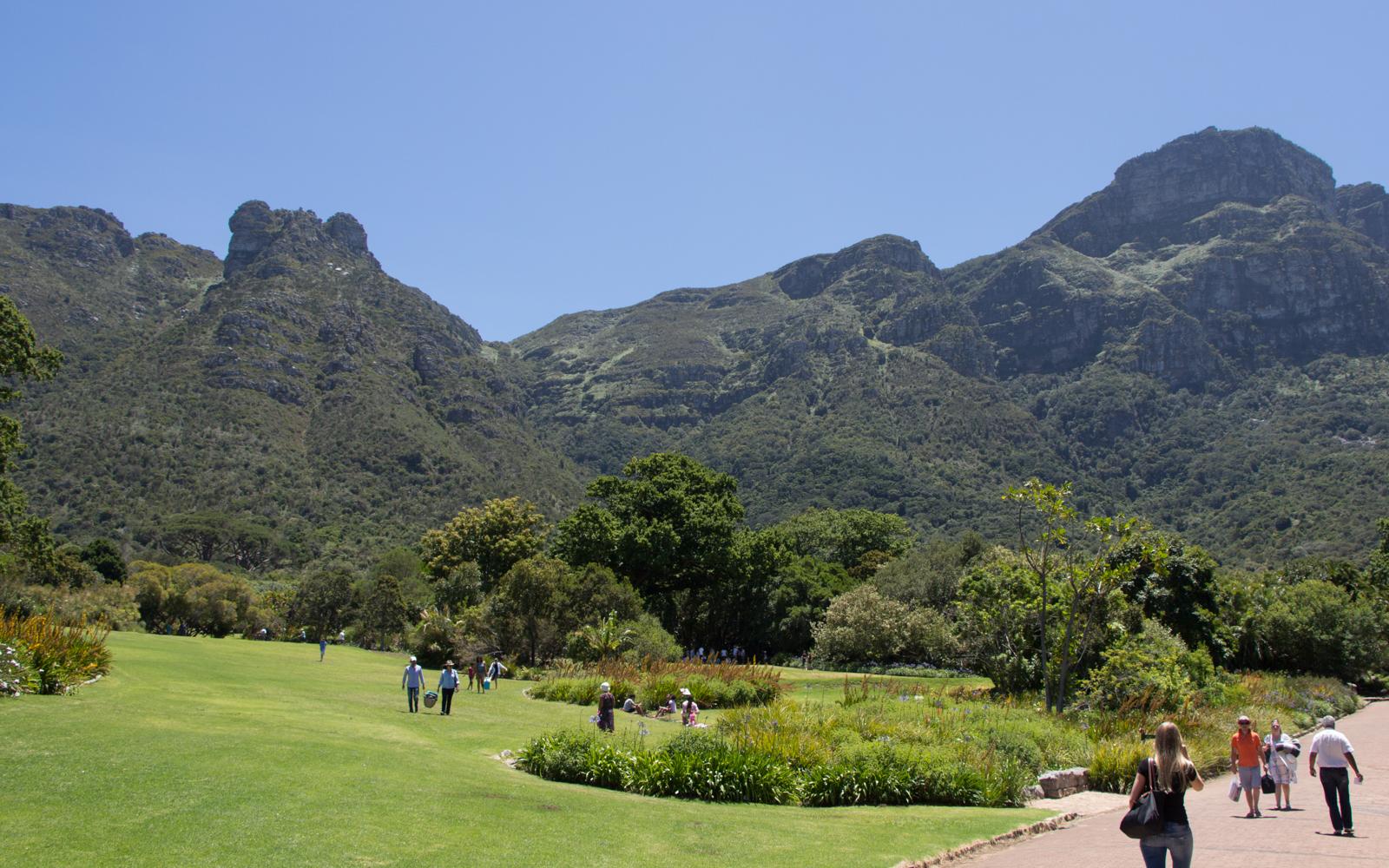 Kapstadt Sehenswürdigkeiten Kirstenbosch Gardens Picknick