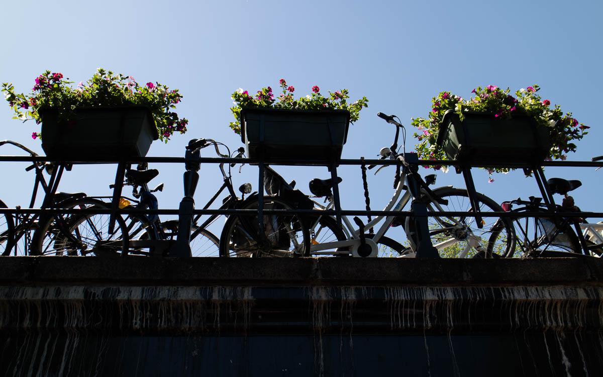 Amsterdam Sehenswürdigkeiten Fahrrad fahren