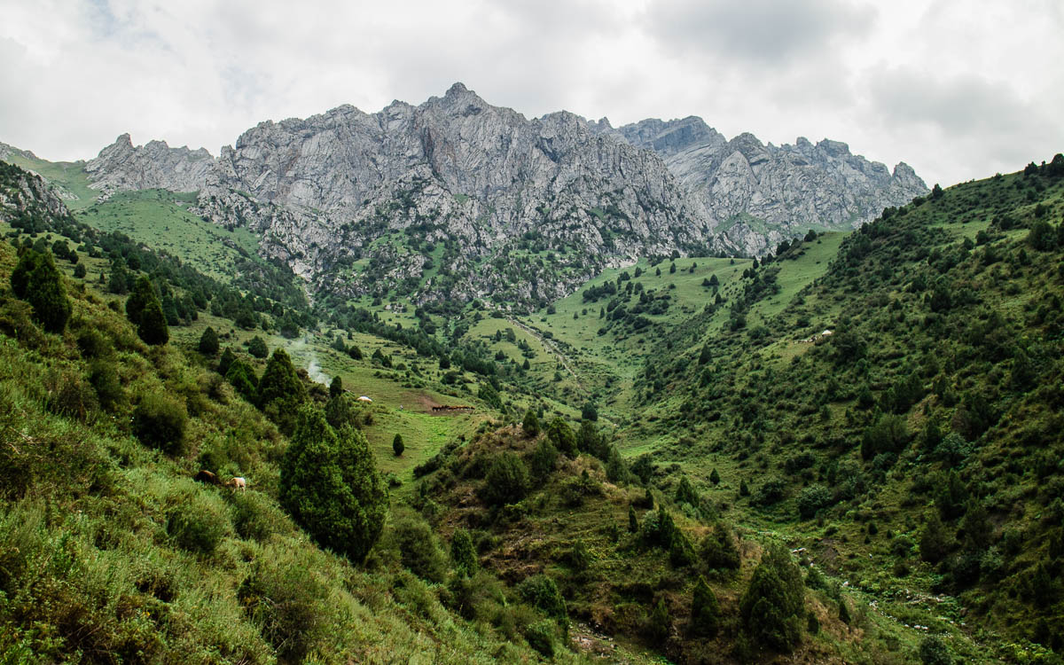 Grünes Kirgistan: Alai Mountains