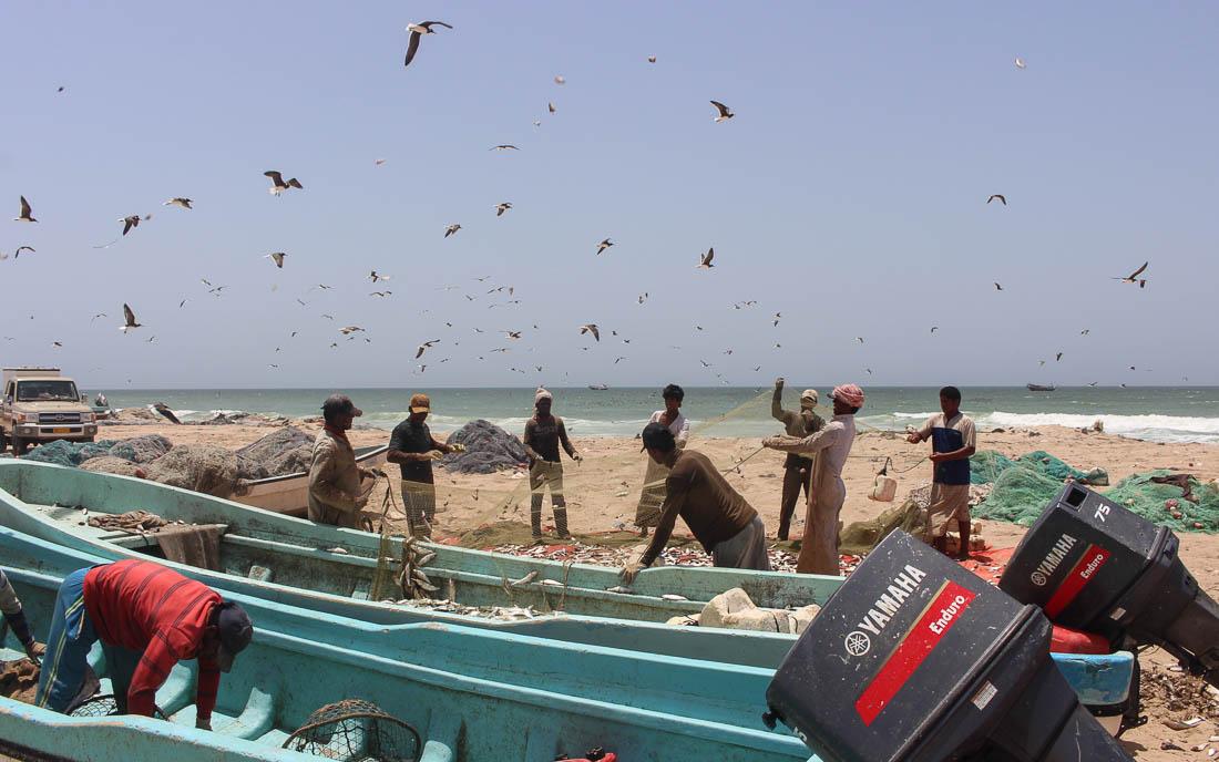 oman-fischerboote-meer