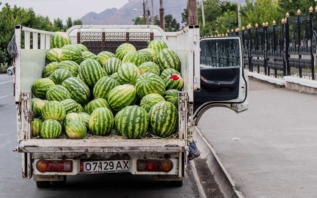Osch Wassermelonen
