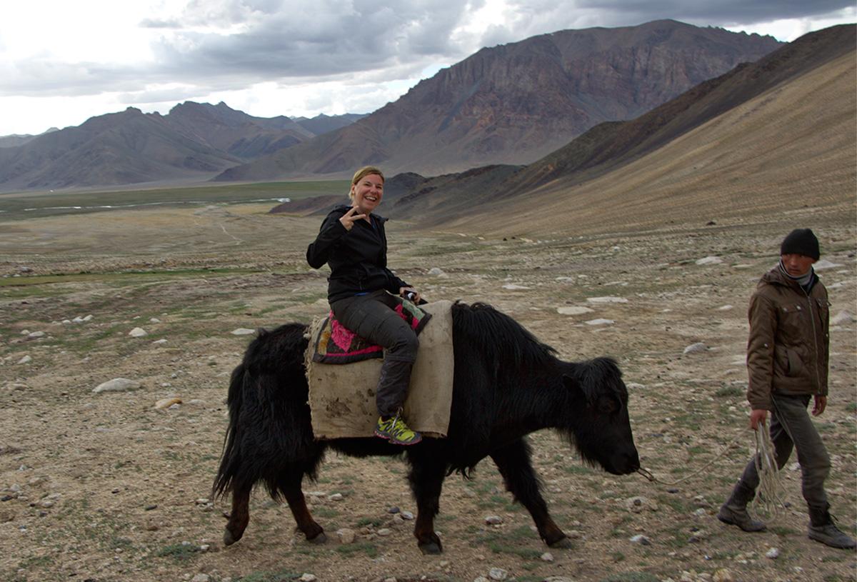 Yak reiten in Alichur Range Bashgumbez (Pamirgebirte)