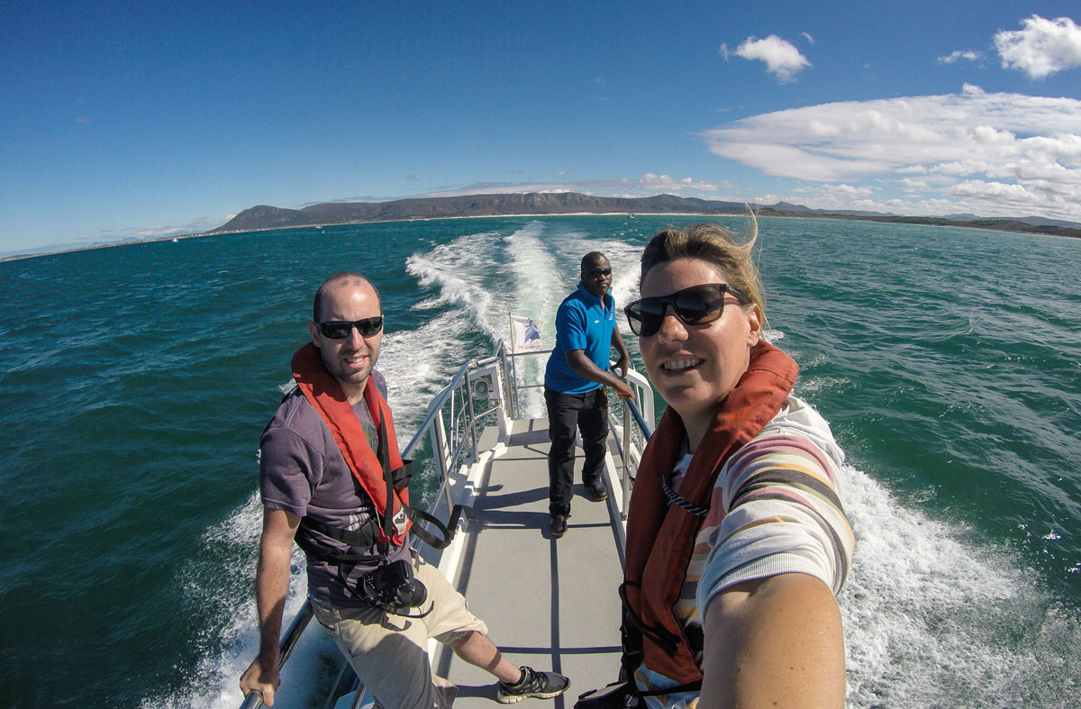 dyer-island-cruise-katamaran