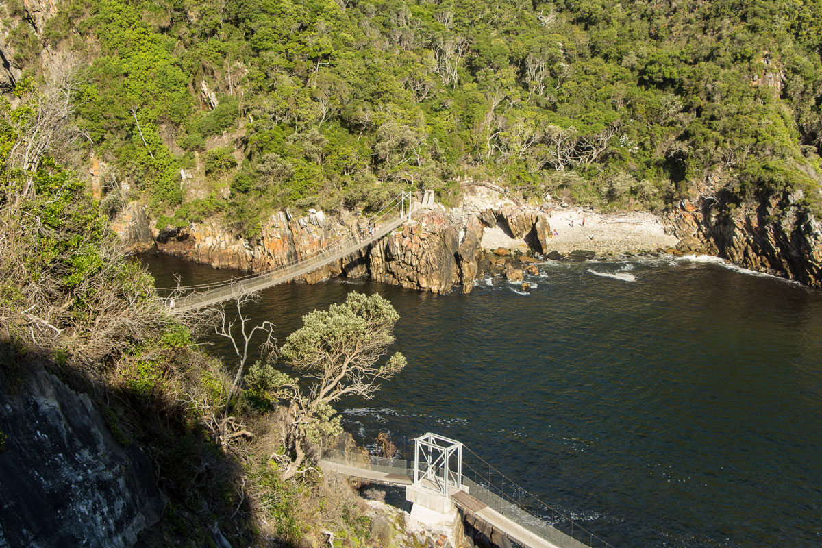 suspension-bridge-tsitsikamma-2