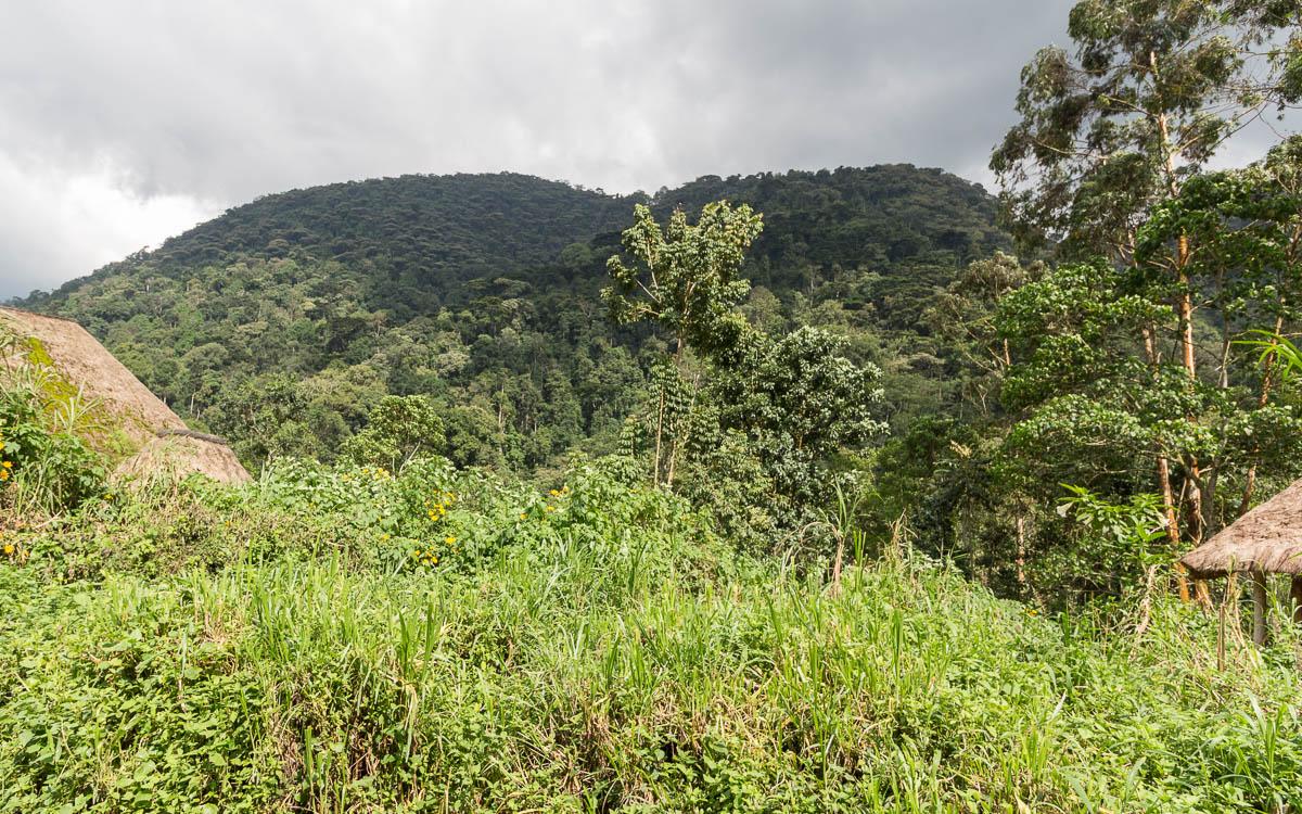 bwindi-nationalpark-buhoma-bwindi-lodge-2