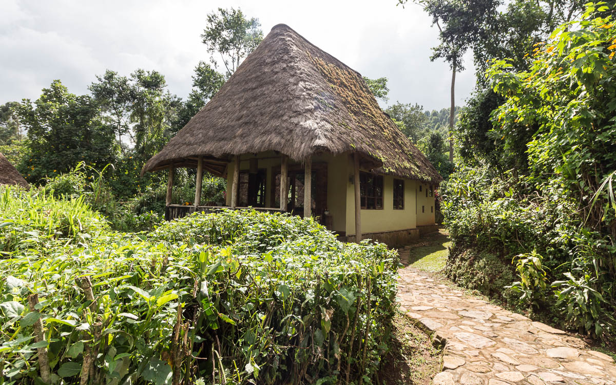 bwindi-nationalpark-buhoma-bwindi-lodge-bandana