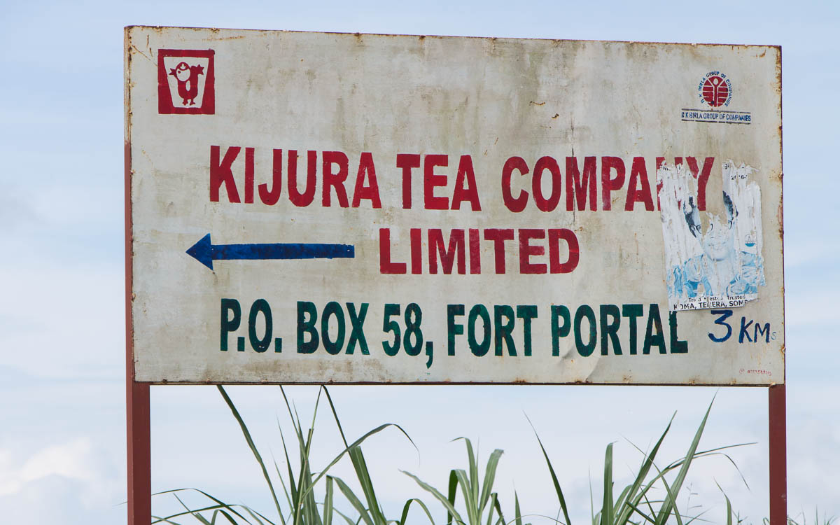 fort-portal-kijura-tea-ompany-limited
