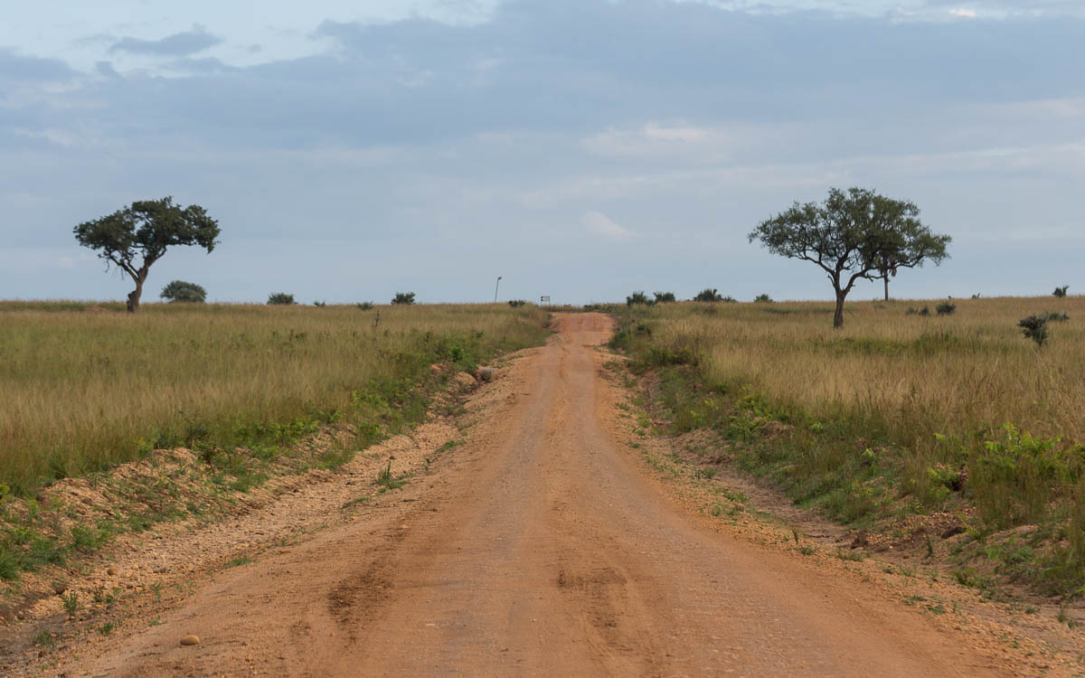 Game Drive im Murchison Falls Nationalpark