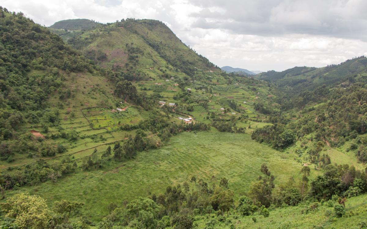 mgahinga-nationalpark-14