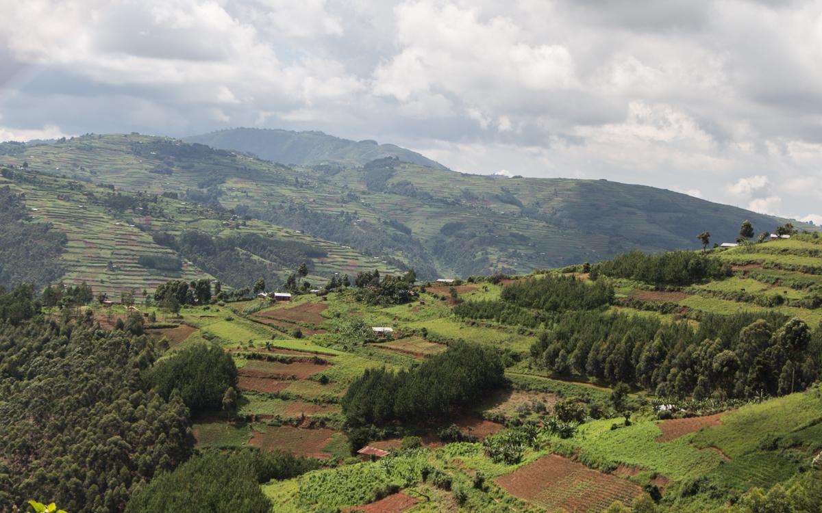 mgahinga-nationalpark-20