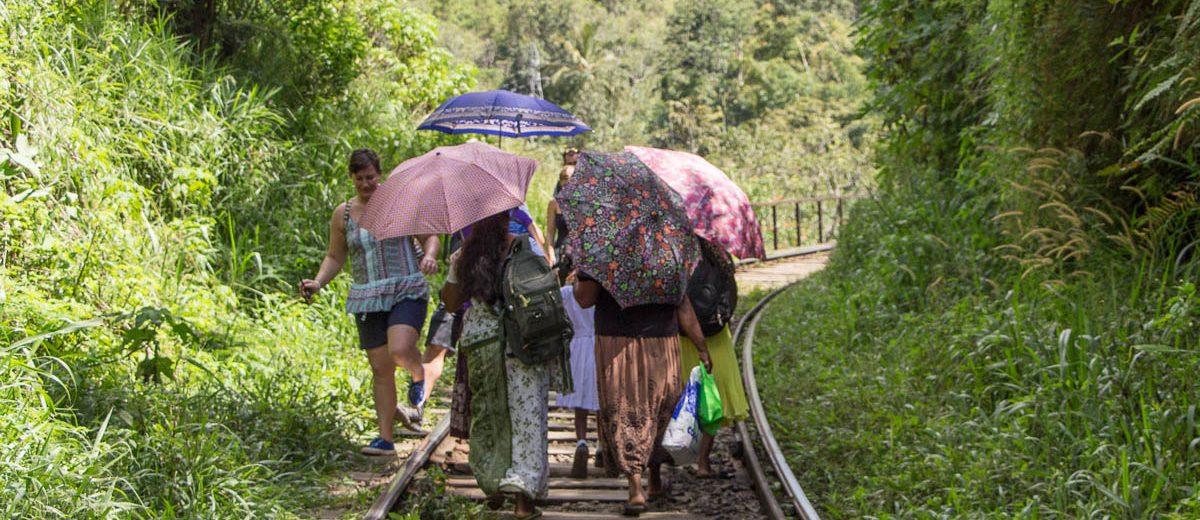 Reisen nach Sri Lanka - Reiseberichte, Tipps, Infos