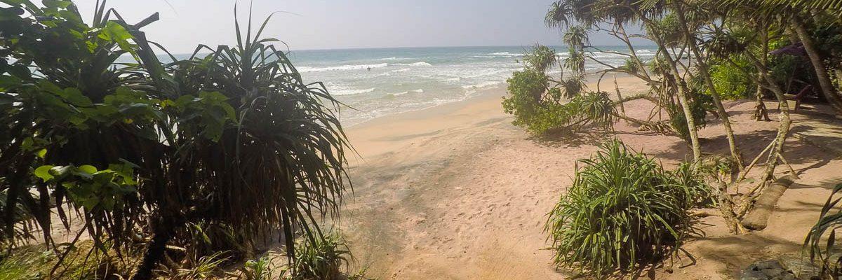Klima und die beste Reisezeit für Sri Lanka