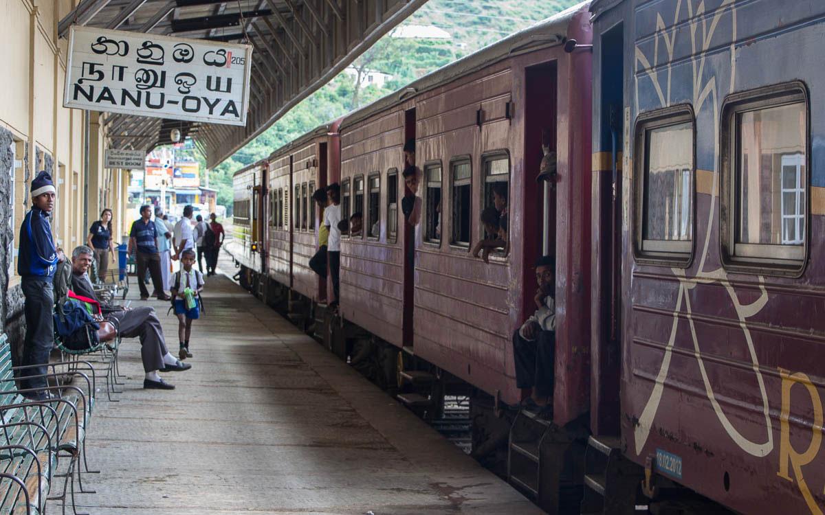 Meine Highlights in Sri Lanka - die Vielfalt macht's aus 8