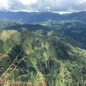 Ausblick Ella Rock auf Little Adams Peak