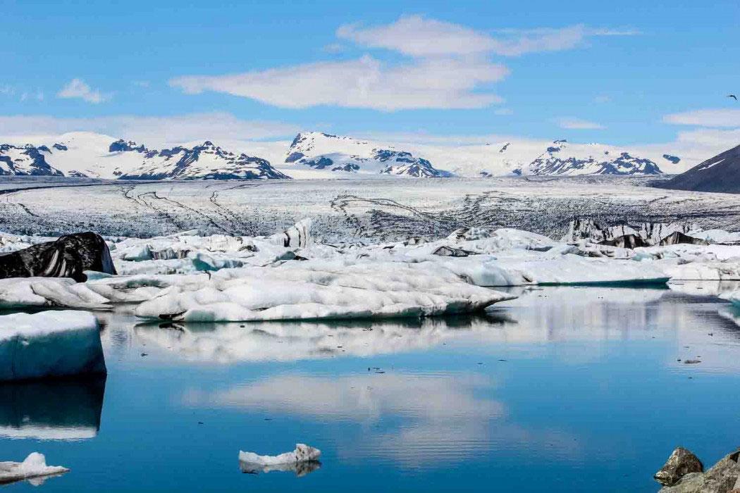 Island Reisetipps: Wale beobachten in Husavikjoekusarlon