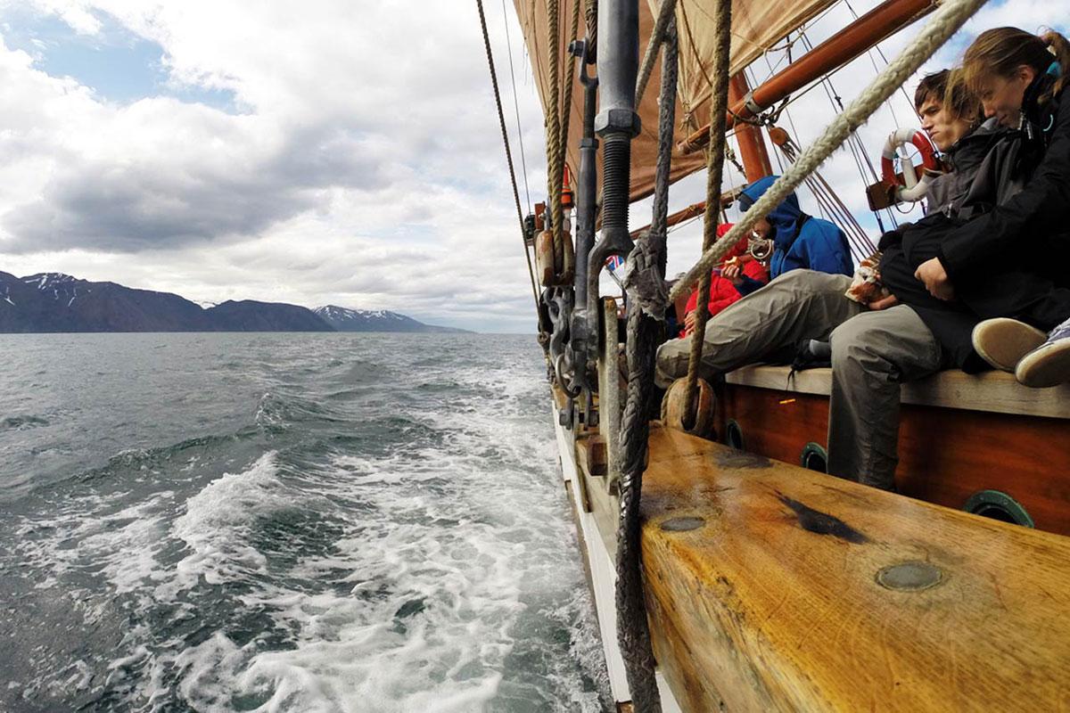 Island Reisetipps Walbeobachtung Husavik ein Highlight
