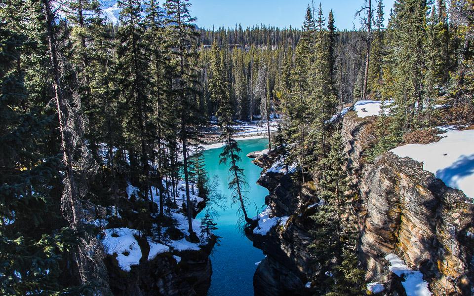 Athabasca Falls und See im Winter