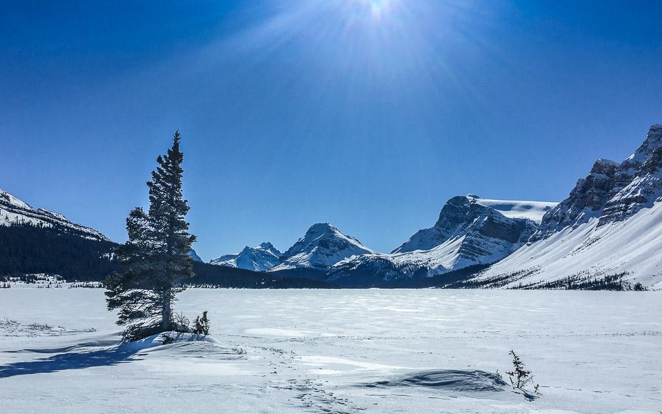Bow Lake am Icefields Parkway Kanada