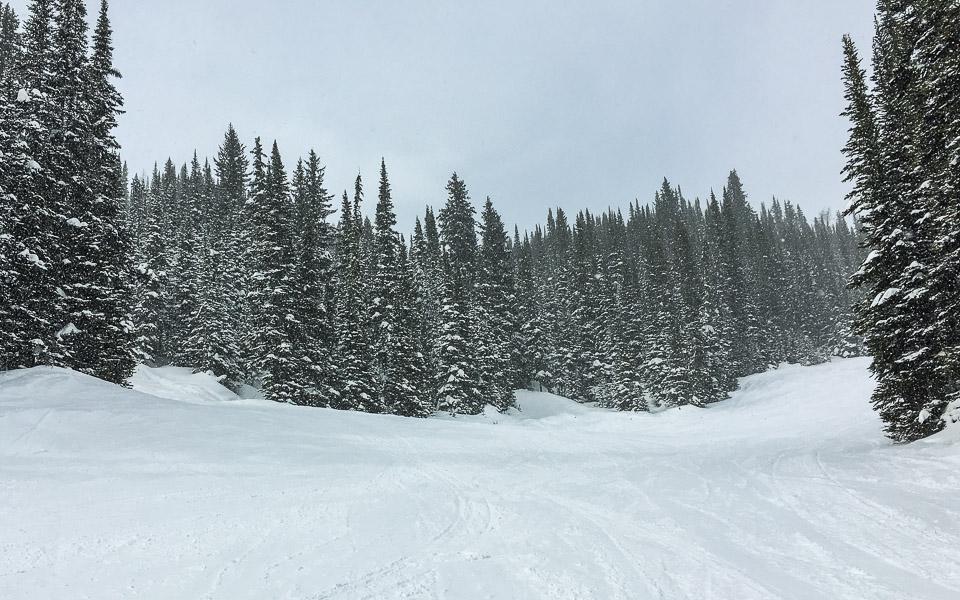 Neuschnee im Sunshine Village und leere Skipisten