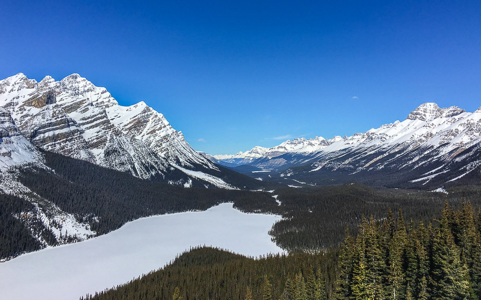 View Point am Peyto Lake Icefields Parkway im Winter