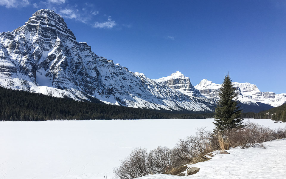 Waterfowl Lake: Mittagspause am Icefields Parkway