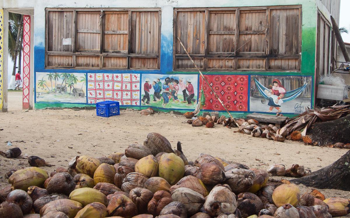 kuna-yala--inseln-panama-kokosnuesse