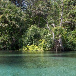 Florida Reisebericht: Tipps mit Route für Rundreise 42