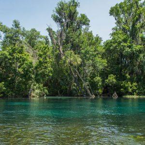Florida Reisebericht: Tipps mit Route für Rundreise 41