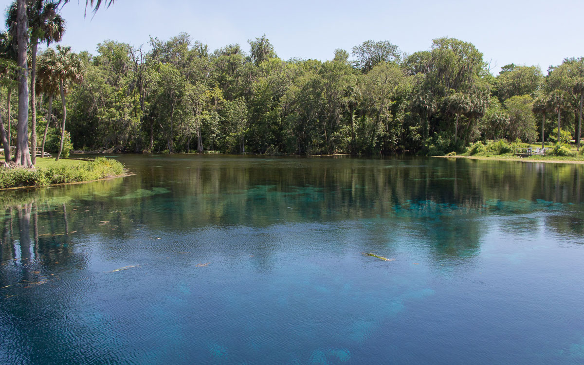 ocala-silversprings-3