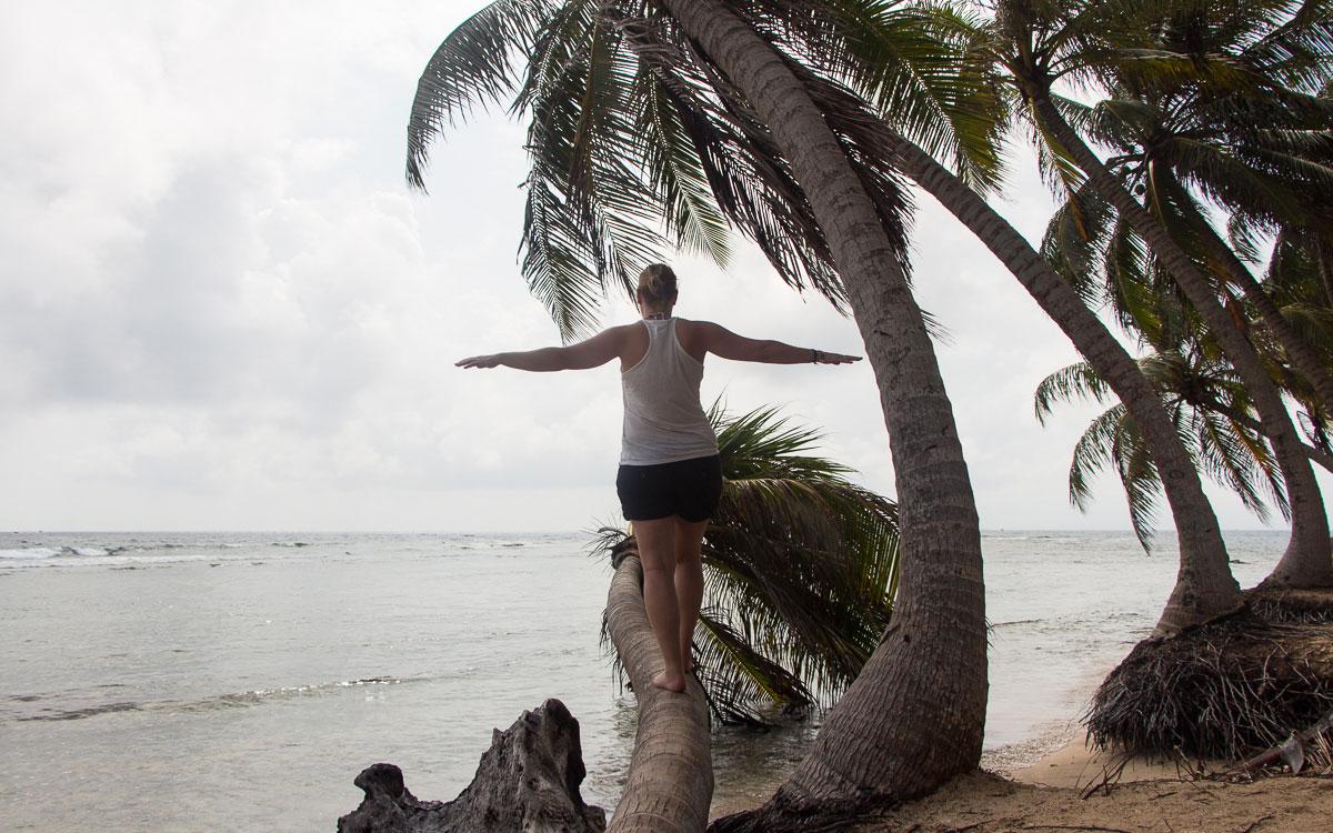 palme-balancieren-san-blas-panama