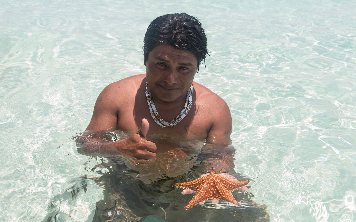 San Blas Inseln Guna Yala Seestern